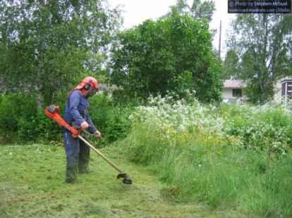 Mandurah lawn mowing gardening services for Lawn mowing and gardening services